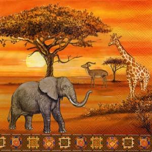 musée de l'Afrique